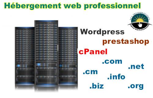 Hébergement web professionnel au Cameroun et en Afrique Centrale